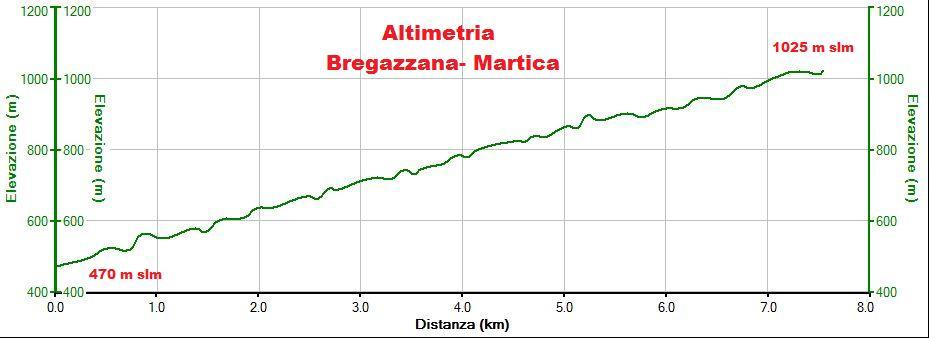 Altimetria Bregazzana-Martica