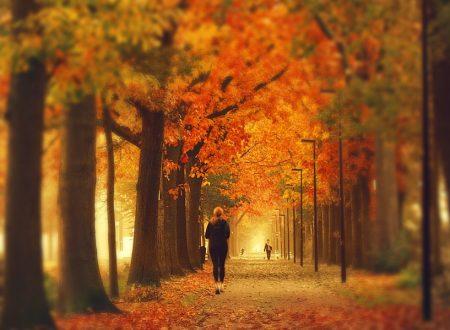 Dove correre il 17-18 novembre 2012