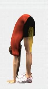 Stretching muscoli ischio