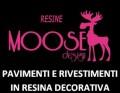a – Moose Design