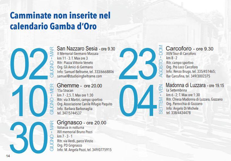 Gamba d'Oro 2020   Calendario gare   Blog di MATTEO RAIMONDI